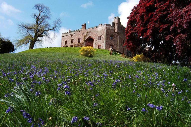 Bluebells at Muncaster Castle