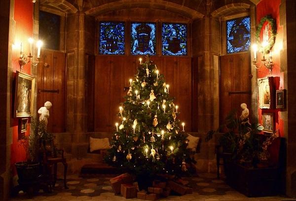 Christmas Educational Visits